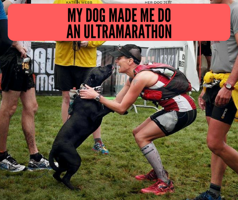dog ultramarathon new zealand