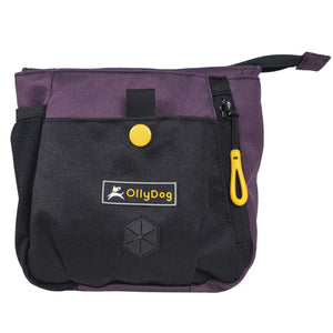 Olly Dog Backcountry Day Bag Dahila