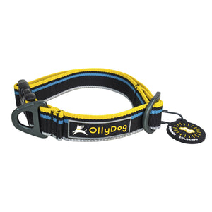 Olly Dog Urban Trail Reflective Collar Anthracite