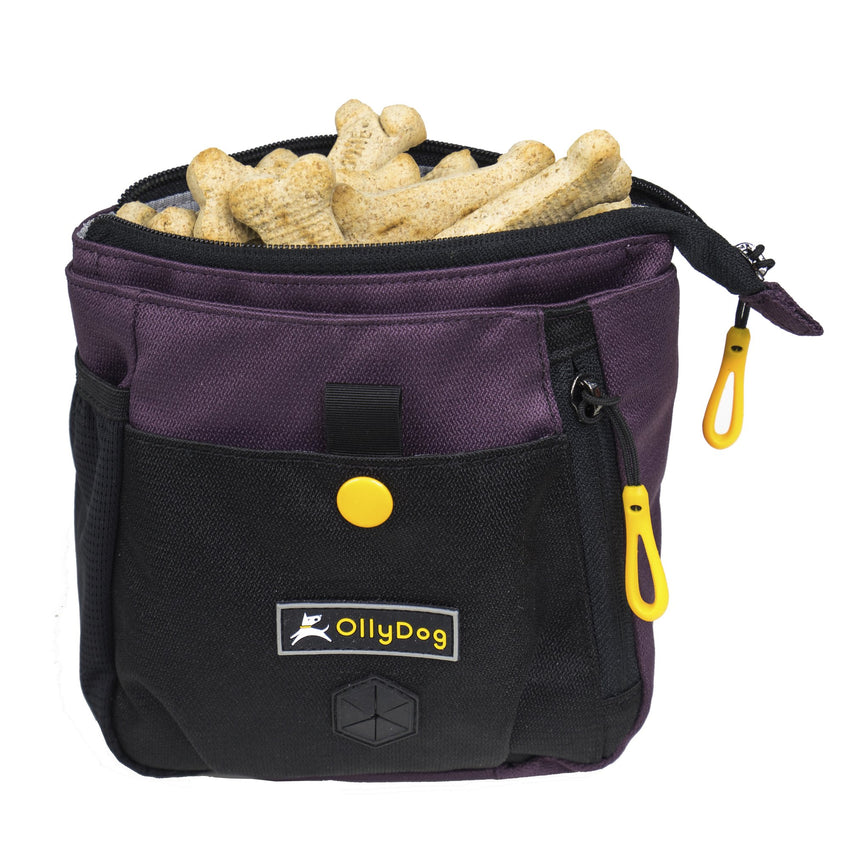 OllyDog Backcountry Day Bag | Outdoor and Walking Dog Gear | NZ