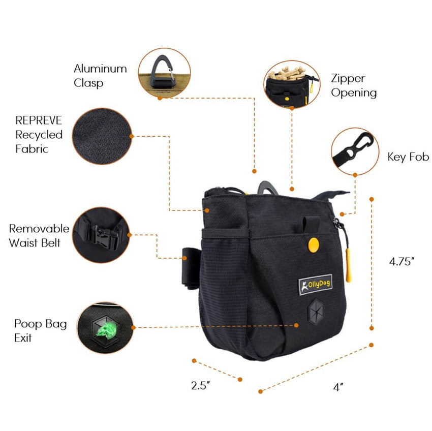 OllyDog Backcountry Day Bag | Outdoor and Walking Dog Gear NZ | OllyDog NZ | Further Faster NZ
