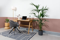 https://ikon1homeworking.co.uk/collections/desks/products/gallery-desk
