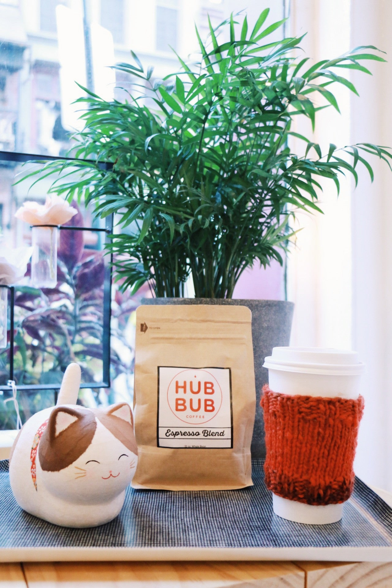 NOV 3: Knit with LOOP & HubBub Coffee