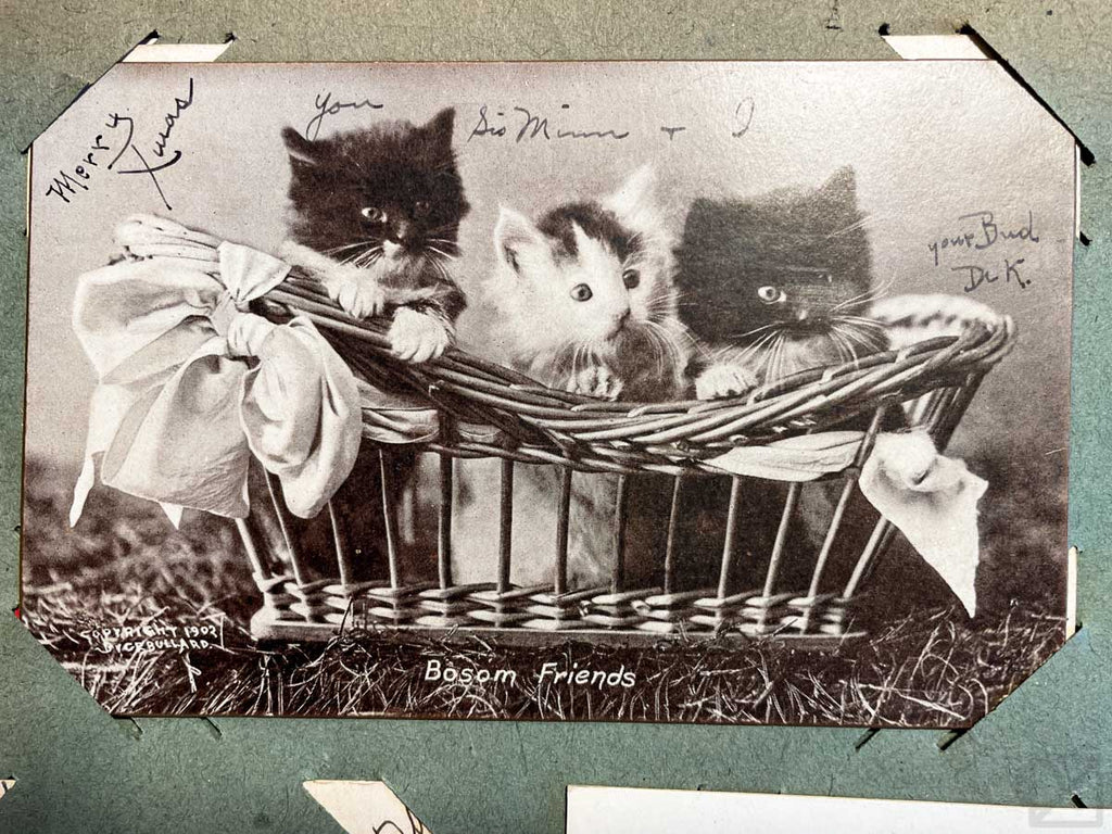 A Christmas card, but one that's too cute to pass up. It's a black and white photo of three kittens in a basket, with text that says 'Bosom Friends'