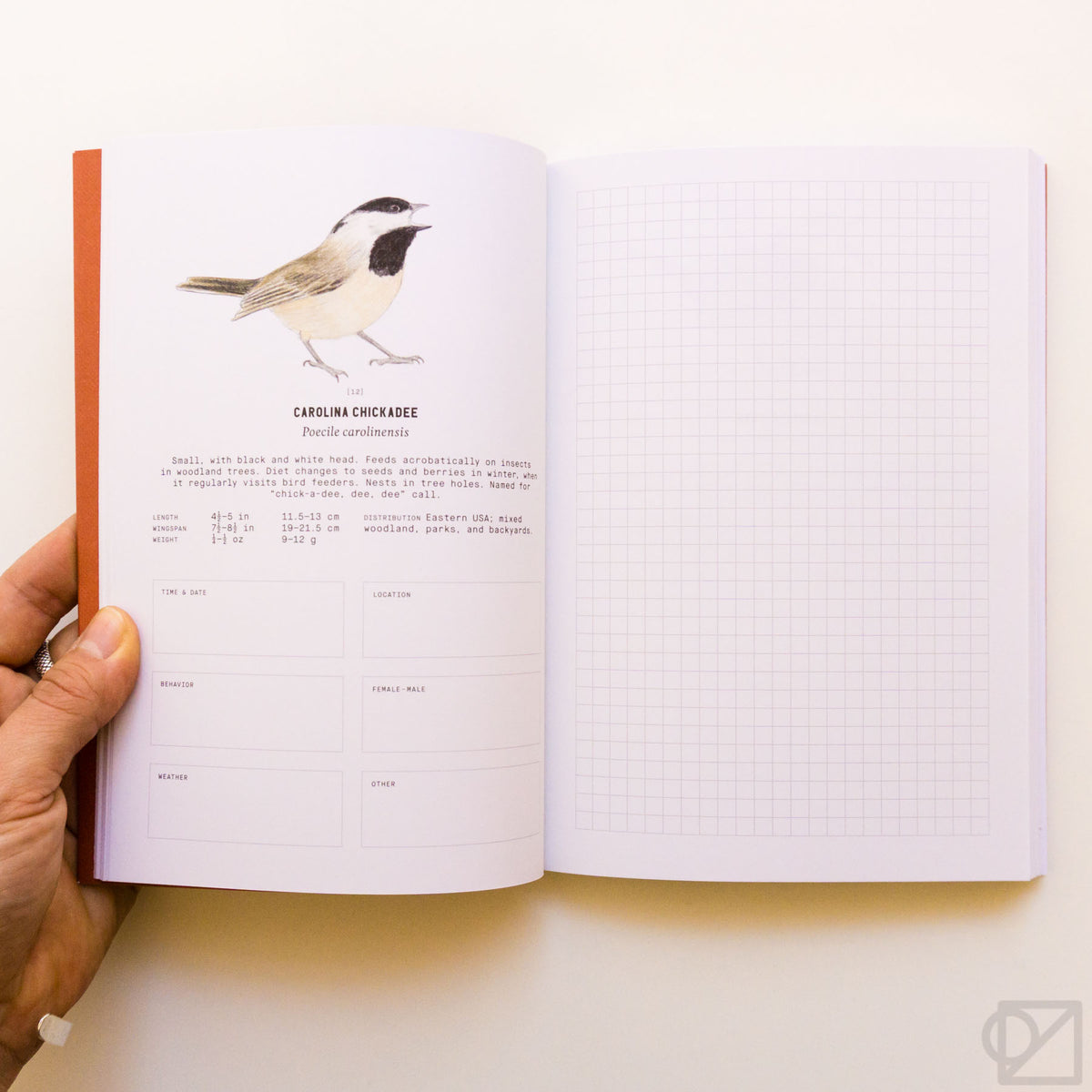 Backyard Birds: An Urban Birdwatching Logbook