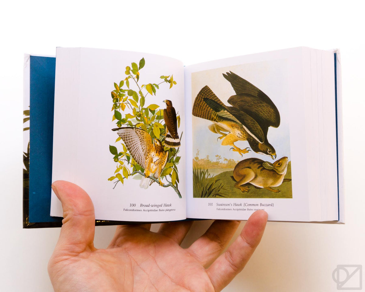 Audubon's Birds of America Baby Elephant Folio Edition
