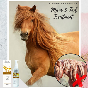 Equine Detangler Mane & Tail Treatment