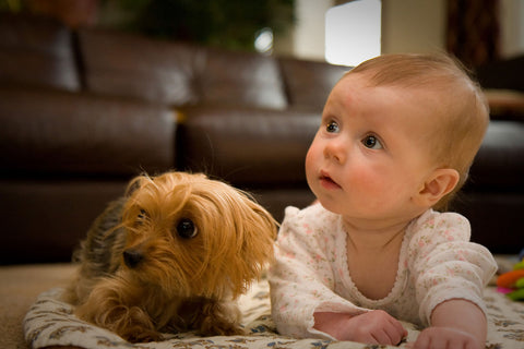 Infant with dog