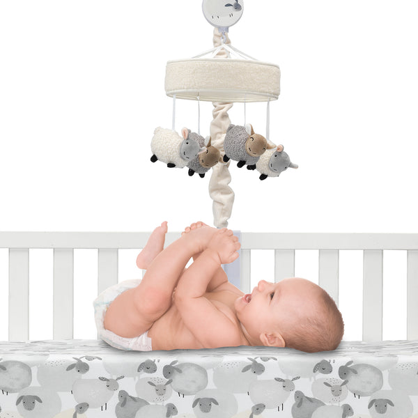 Sleepy Sheep Musical Baby Crib Mobile by Lambs & Ivy