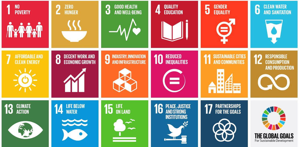 The United Nations 17 Global Goals for sustainability is what the Shopping Circle strives to acheive