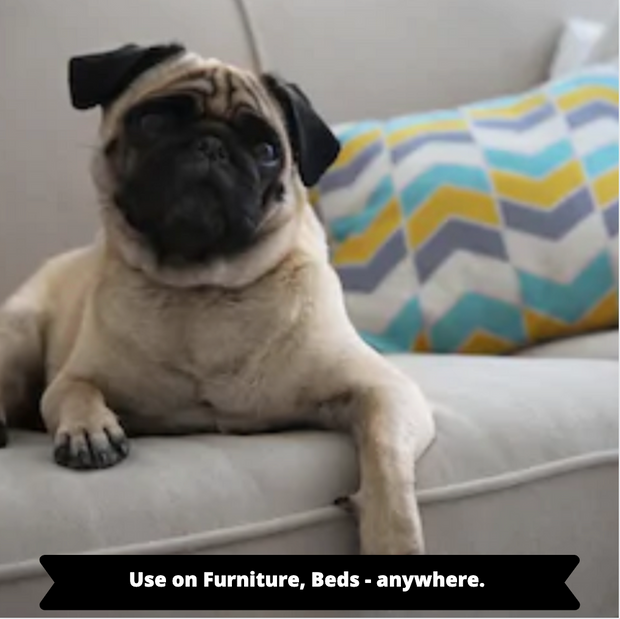 Pungent Pug | Super Odor Eliminating Spray | Made in the USA