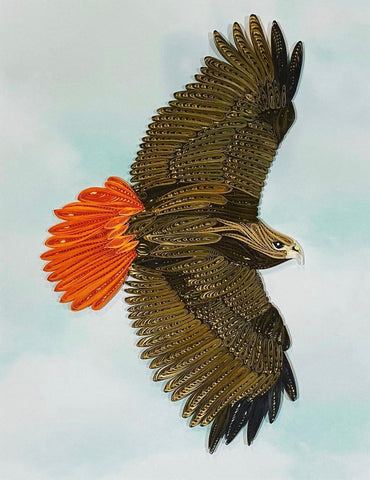 Red-tail eagle