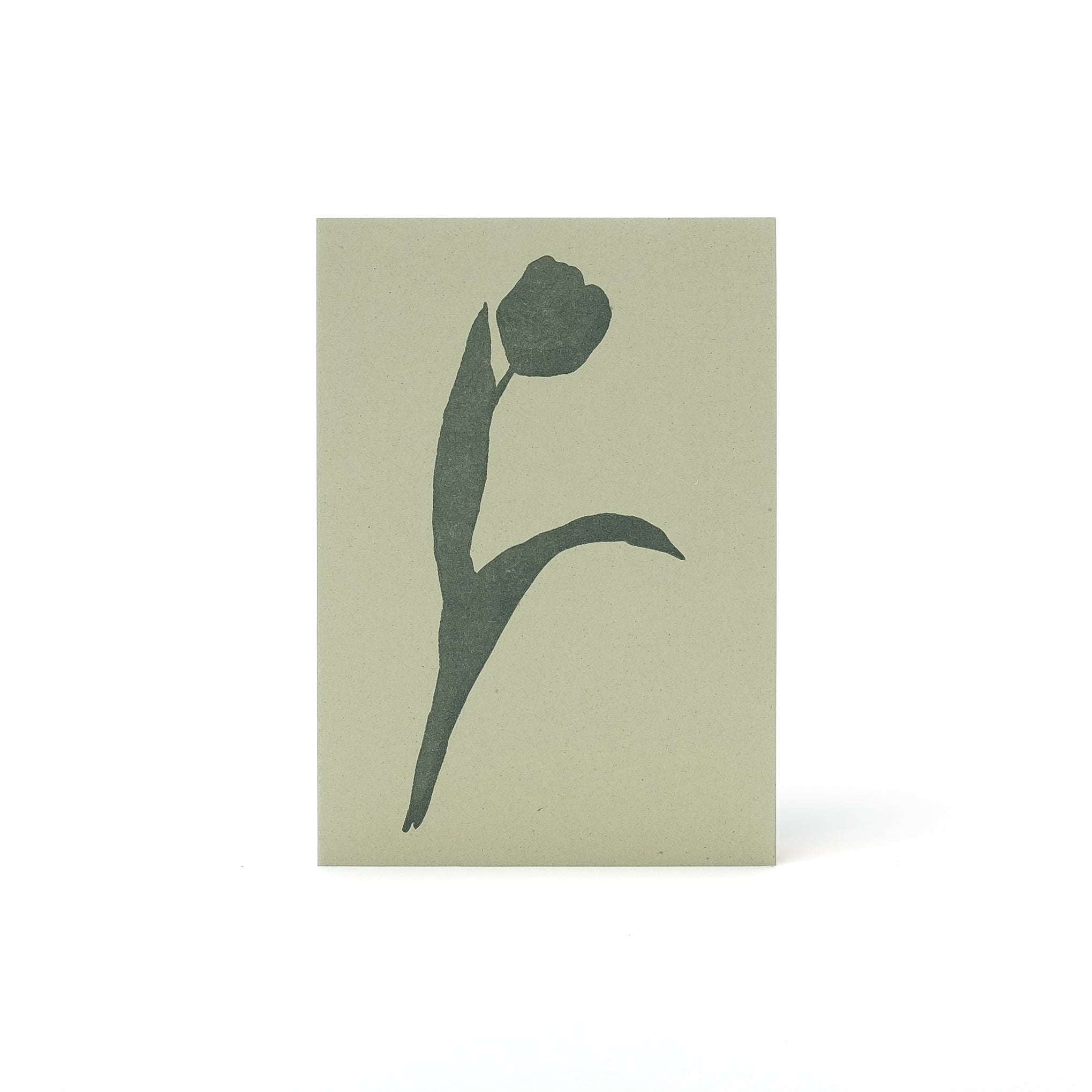 Tulip Letterpress Card <br>Kiwi - Esme Winter