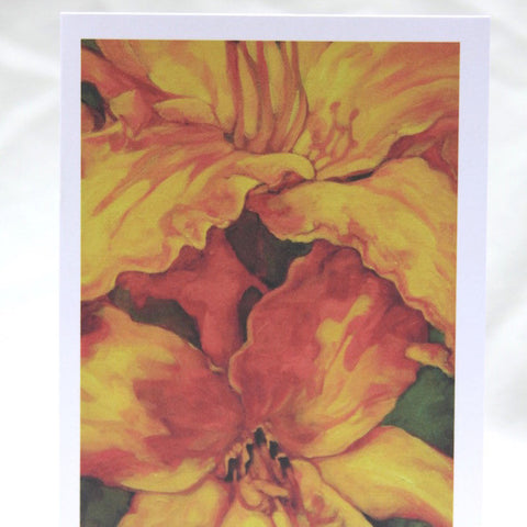 Agnus Dei - Orange Lily Cards - Set of 12 Cards
