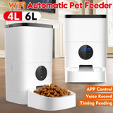MEIGAR Wifi/ Button Version Automatic Pet Feeder.  4L/6L Dispensers. APP Controled Voice Recording LCD Screen.