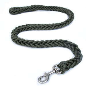 DOGSTORY Super Strong Nylon Dog Lead For Medium or Large Dogs.