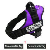 WODONDOG  Customizable Harnesse For Dogs with Name Label. Reflective and Adjustable For Medium or Large Dogs.