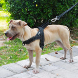 DOGFAD Easy On and Off Adjustable Reflective Harness for Medium and Large Dogs.
