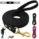 DIDOG  Large Nylon Dog Leash. 2m 3m 5m Available.