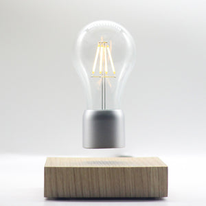 Open image in slideshow, Classic Floating light bulb