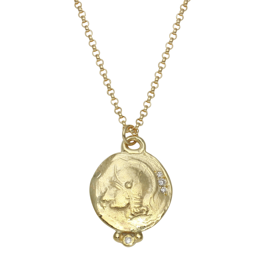 Warrior Gold Coin Necklace