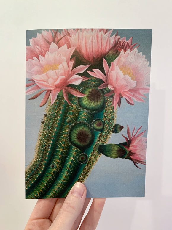Blooming Cactus Card