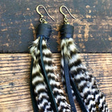 Pirate Feather Earrings - Grizzly