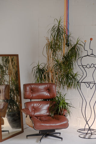 house-plant-hugs-a-red-leather-chair
