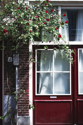red-door-and-flowers