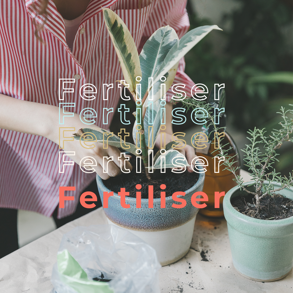 Gardening Supplies - Fertiliser, Insecticide & Pesticide