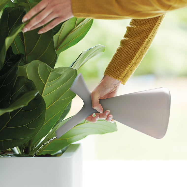 Plunge Watering Can 1.7ltr by Robert Bronwasser in Warm Grey