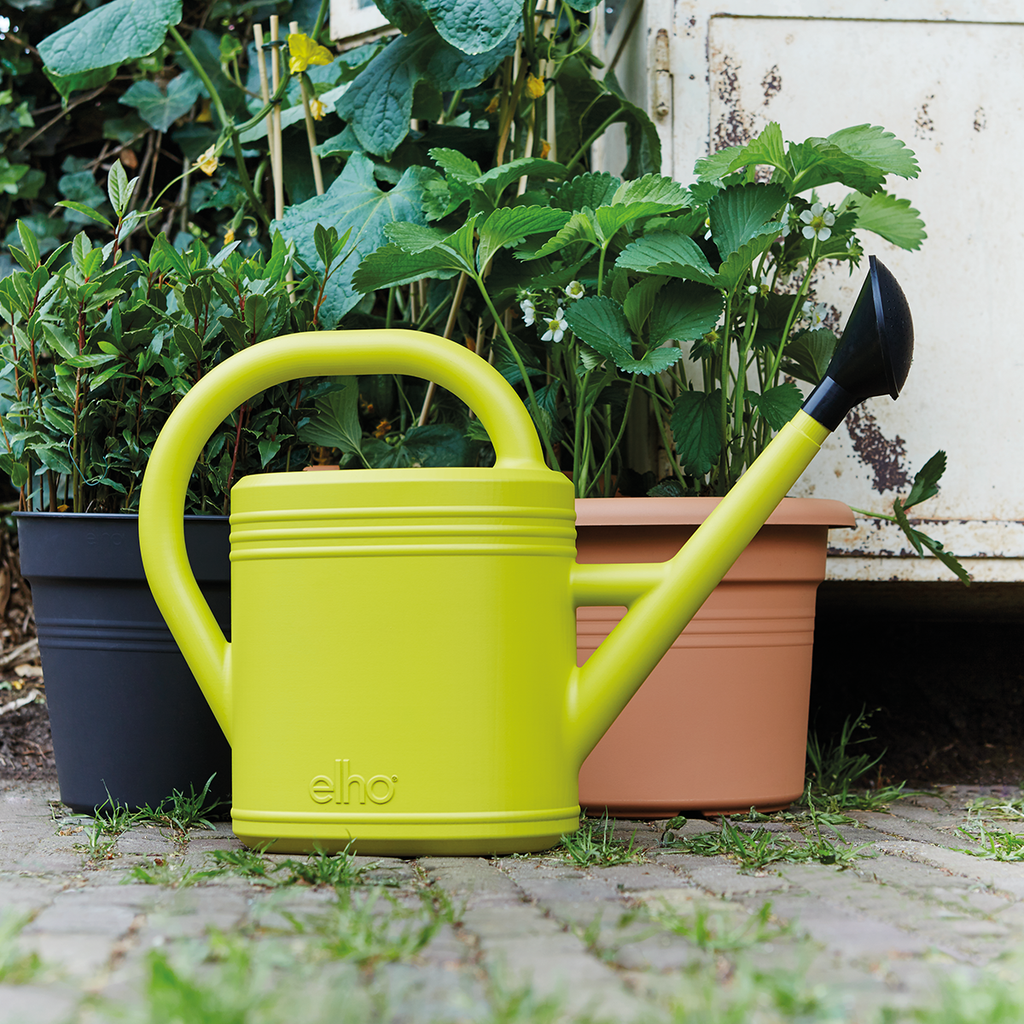 Green Basics Watering Can 10ltr in living black