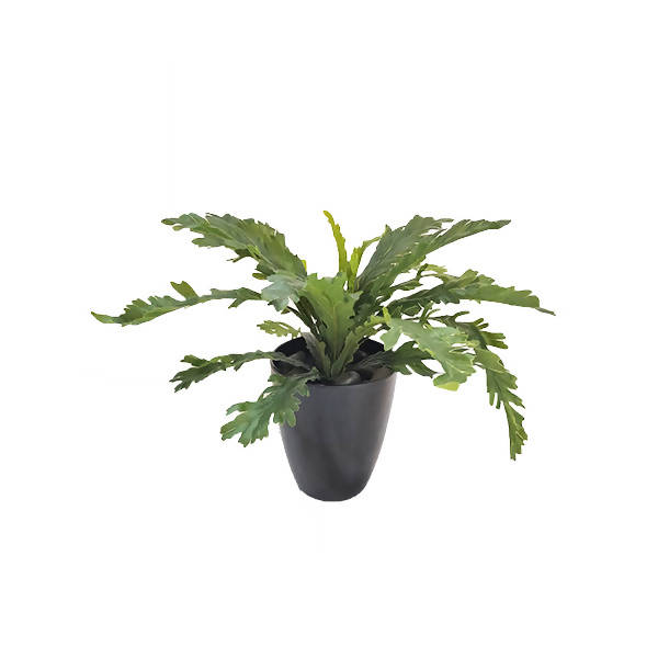 Artificial Potted Bird's Nest Fern Bush with Black Pot (0.3m)