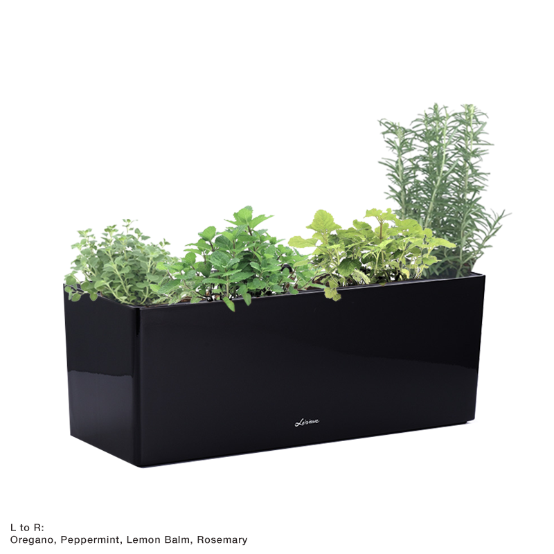 Martha 70cm, type A in Black with Assorted herbs