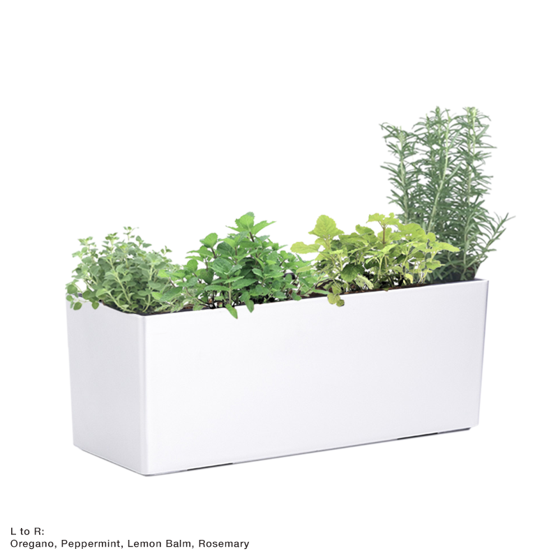 Martha 70cm, type A in White with Assorted herbs