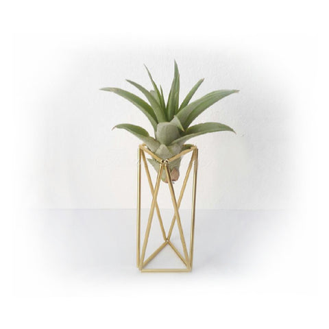 Geometric Airplant Holder in Gold