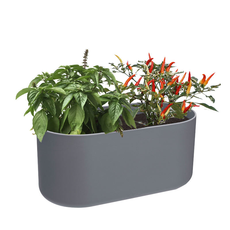 B. For Soft Duo 27cm Anthracite with Thai Basil & Chilli Padi