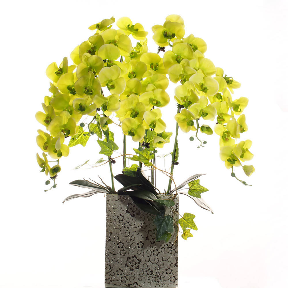 Artificial Orchid Arrangement Lime Green 5 stalks in Gold Pot