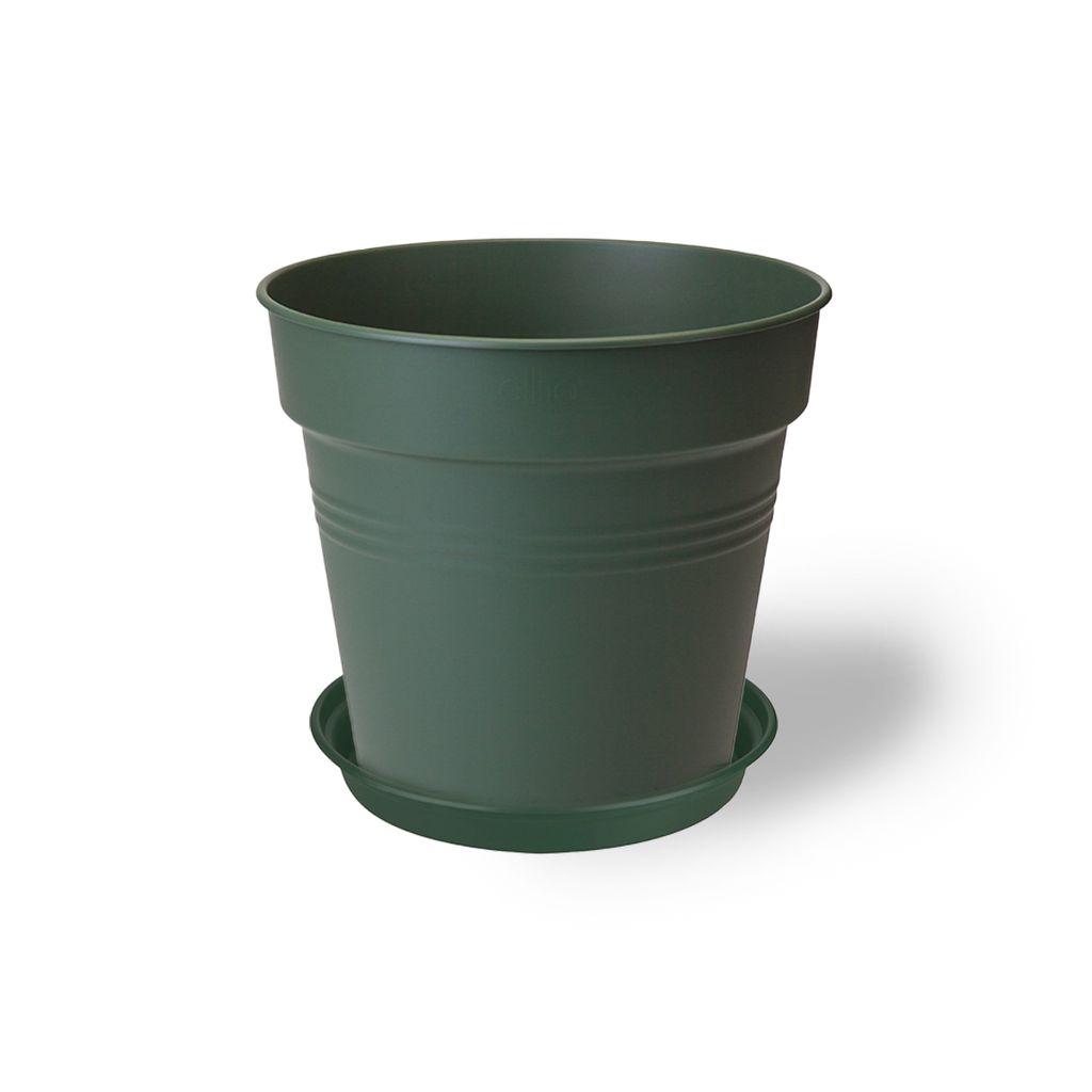 Green Basics Growpot 17cm in Leaf Green with 14cm Saucer