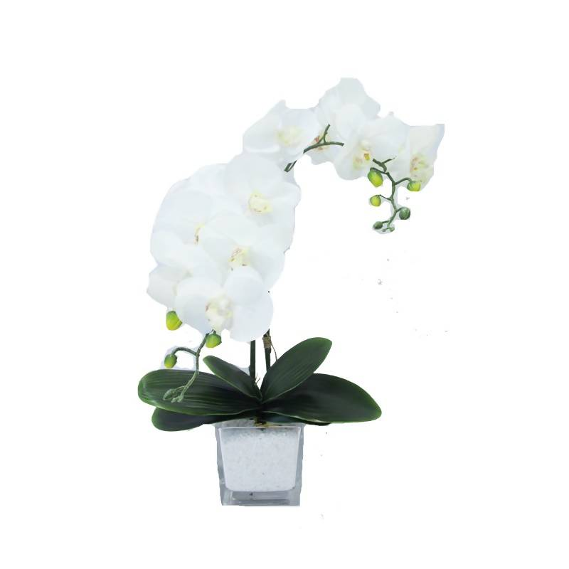 Artificial White Phalaenopsis Orchid Arrangement (0.55m)