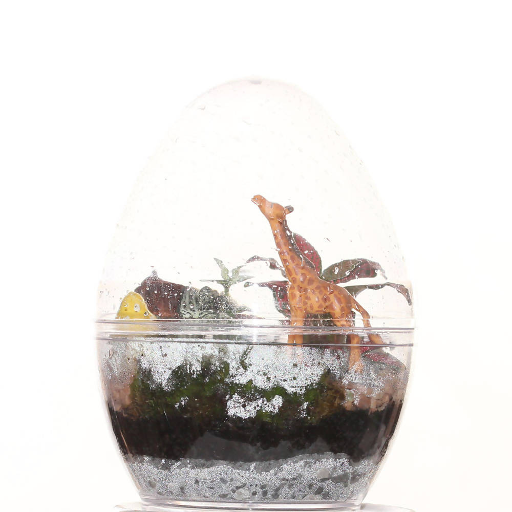 Terrarium Easter Egg with plants