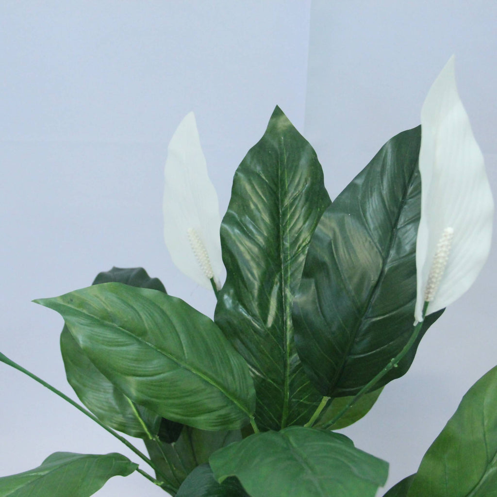 Artificial Potted Spathiphyllum (0.8m)
