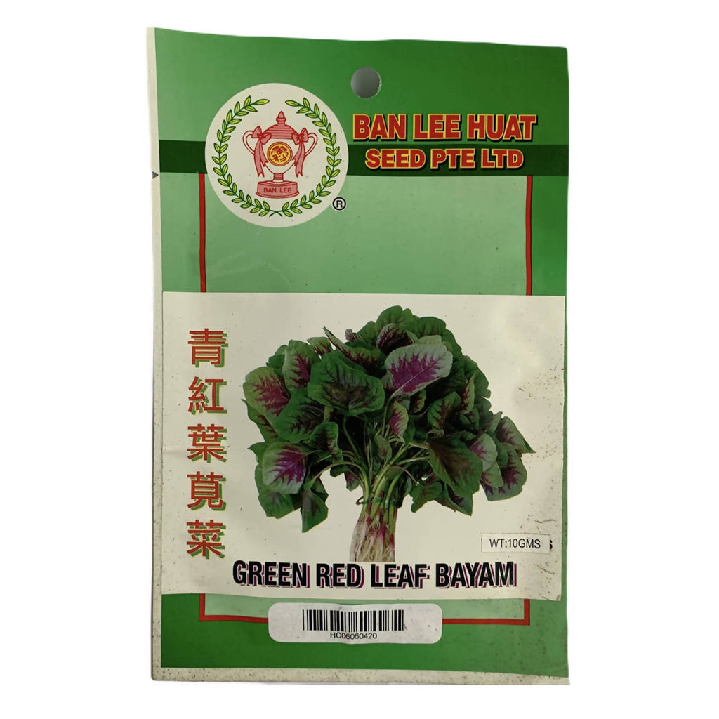 Green Red Leaf Spinach