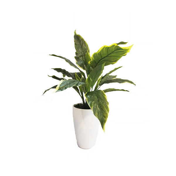 Artificial Big-Leaf Hosta Plant with White Pot (0.6m)