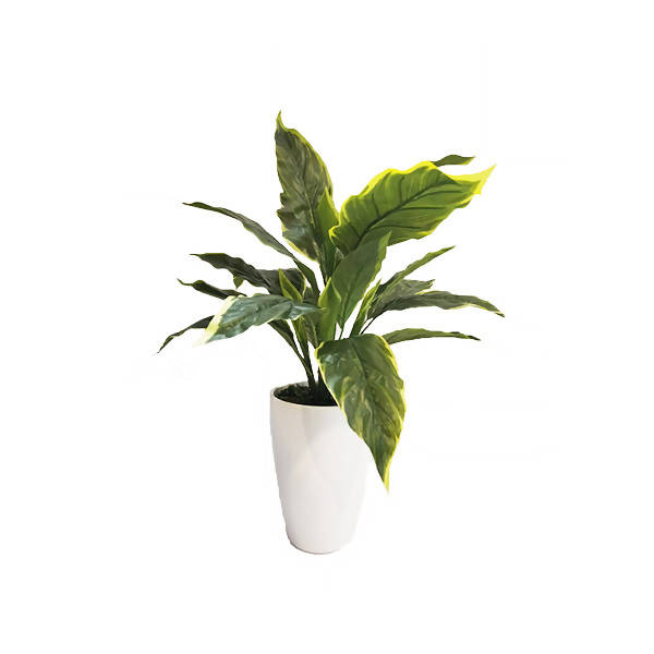 Artificial Big-Leaf Hosta Plant with White Pot (0.45m)