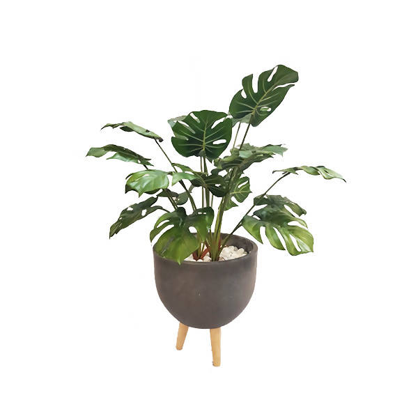Artificial Potted Monstera with Grey Pot (0.85m)