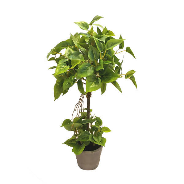 Artificial Potted Mini Philodendron Topairy (0.55m)