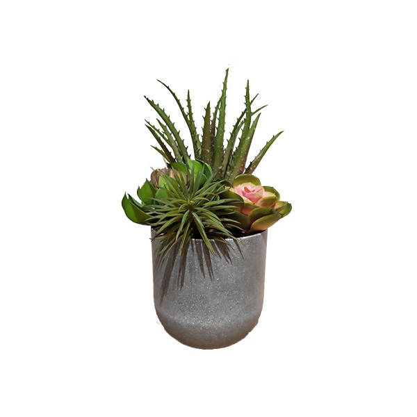 Artificial Potted Assorted Succulent with Grey Pot (0.3m)
