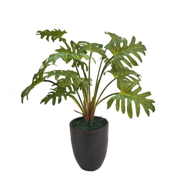 Artificial Potted Philodendron (0.6m)