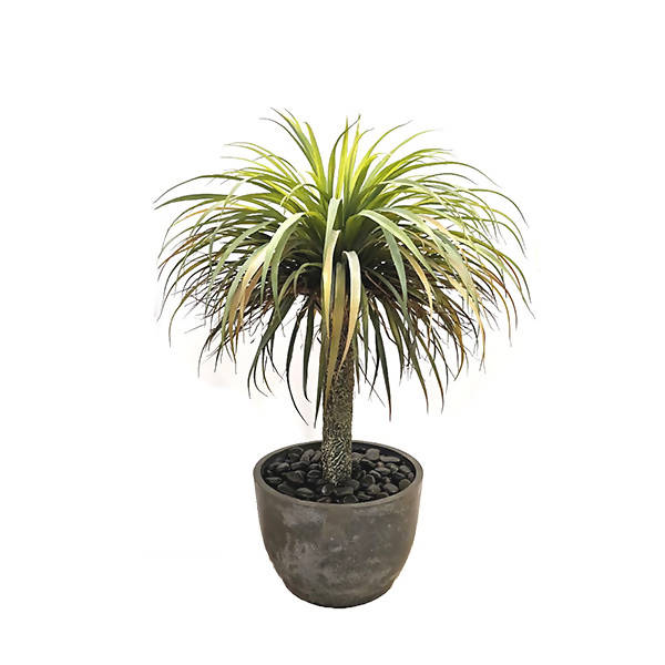 Artificial Potted Yucca Plant (1.1m)